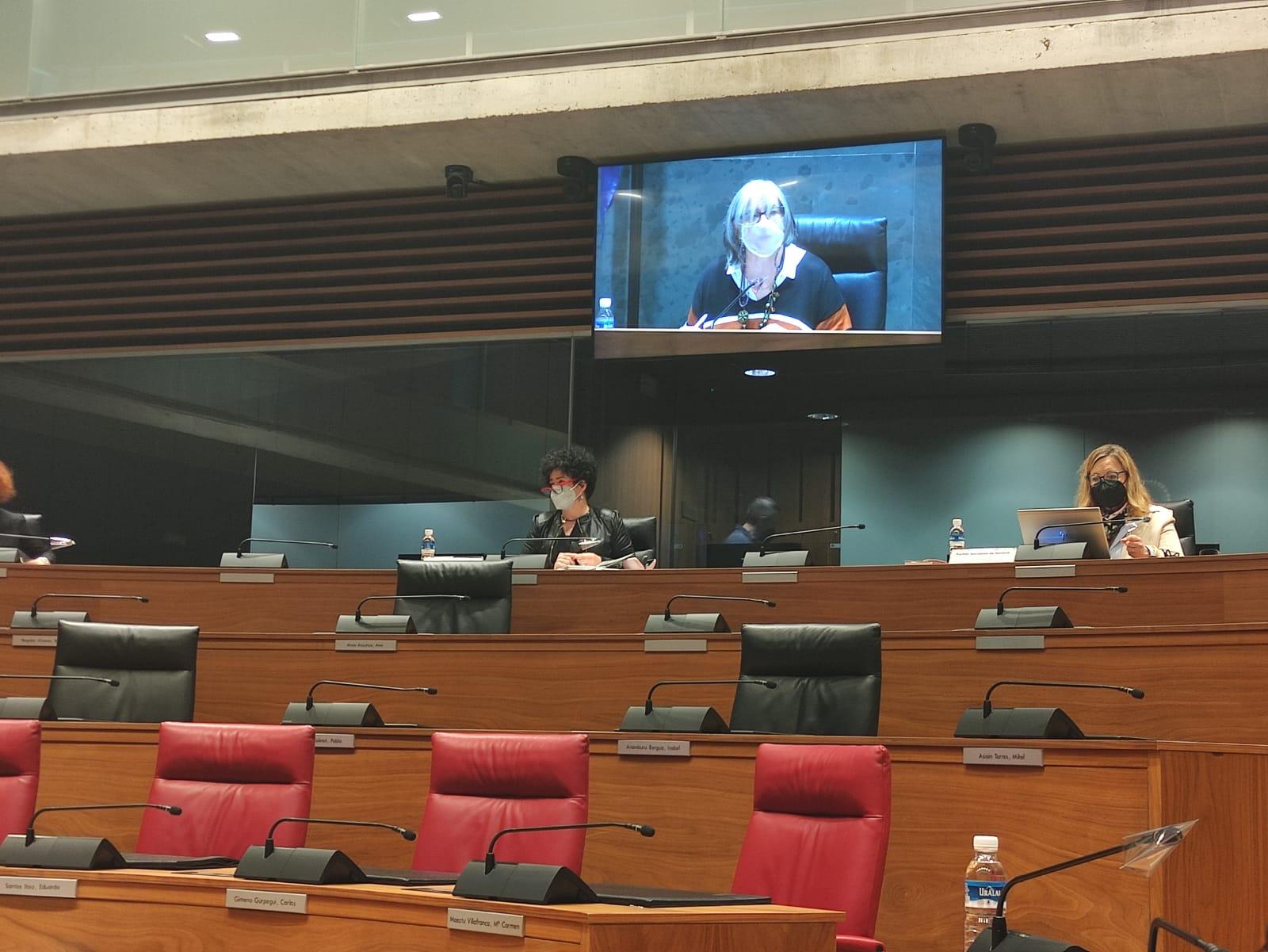 Imagen del parte del salón de plenos del Parlamento de Navarra durante la comparecencia