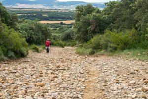Imagen de un peregrino en un tramo del Camino de Santiago