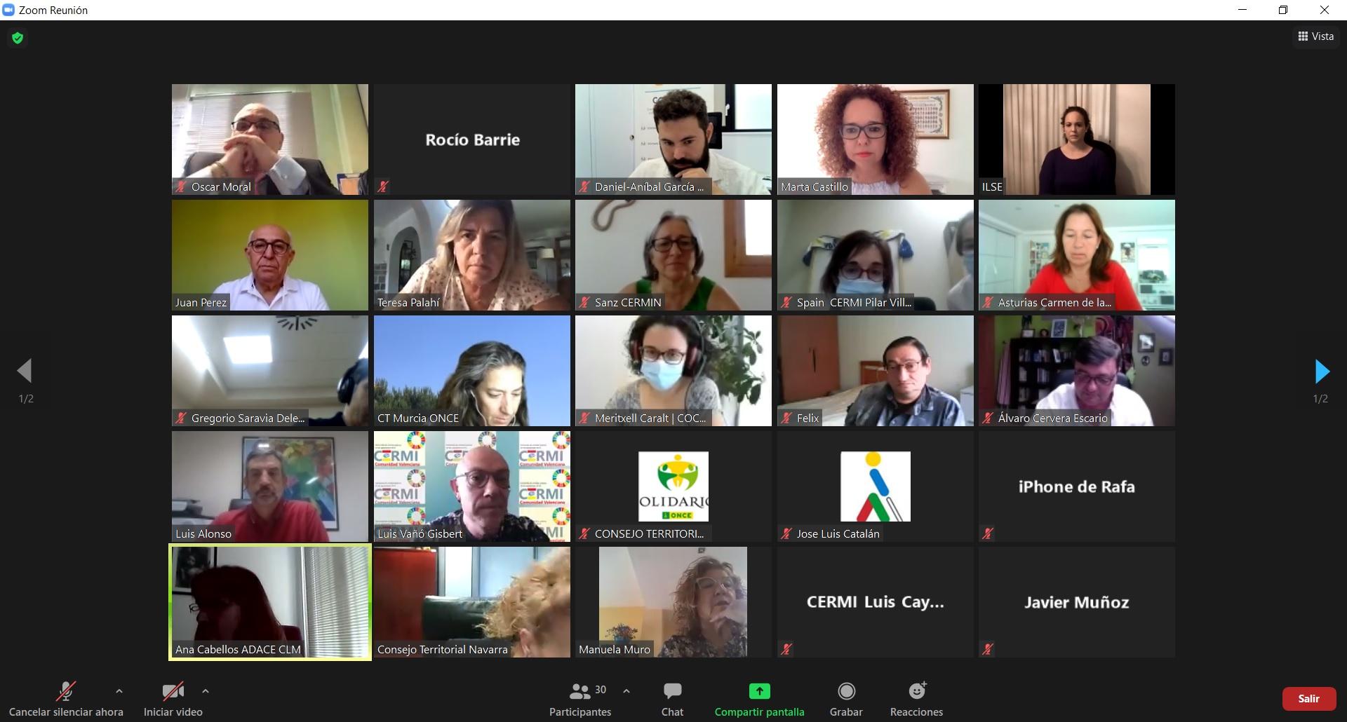Captura de pantalla de un momento de la reunión donde aparecen las personas representantes de los CERMIs autonómicos asistentes a la reunión