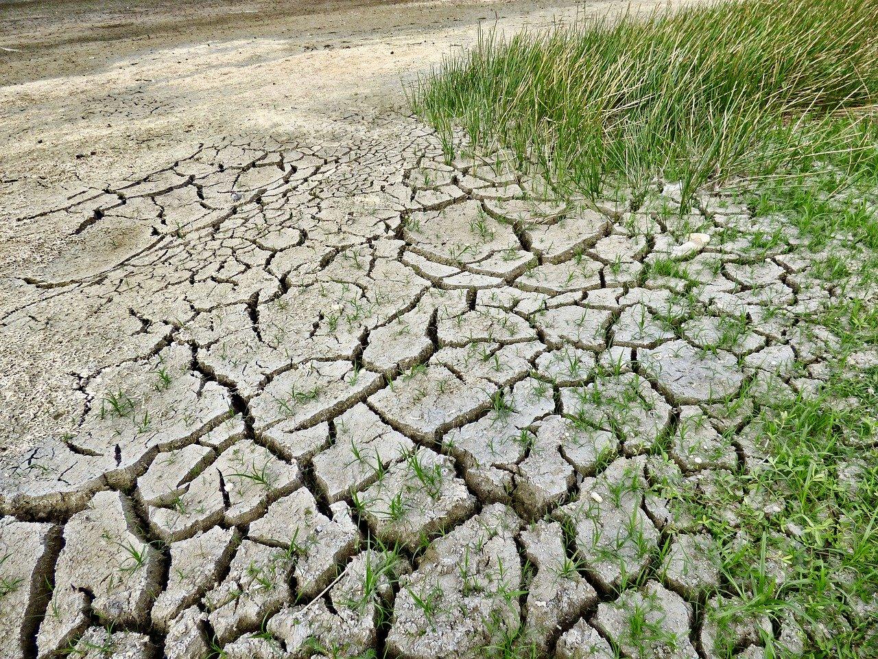 Imagen de tierra seca y agrietada
